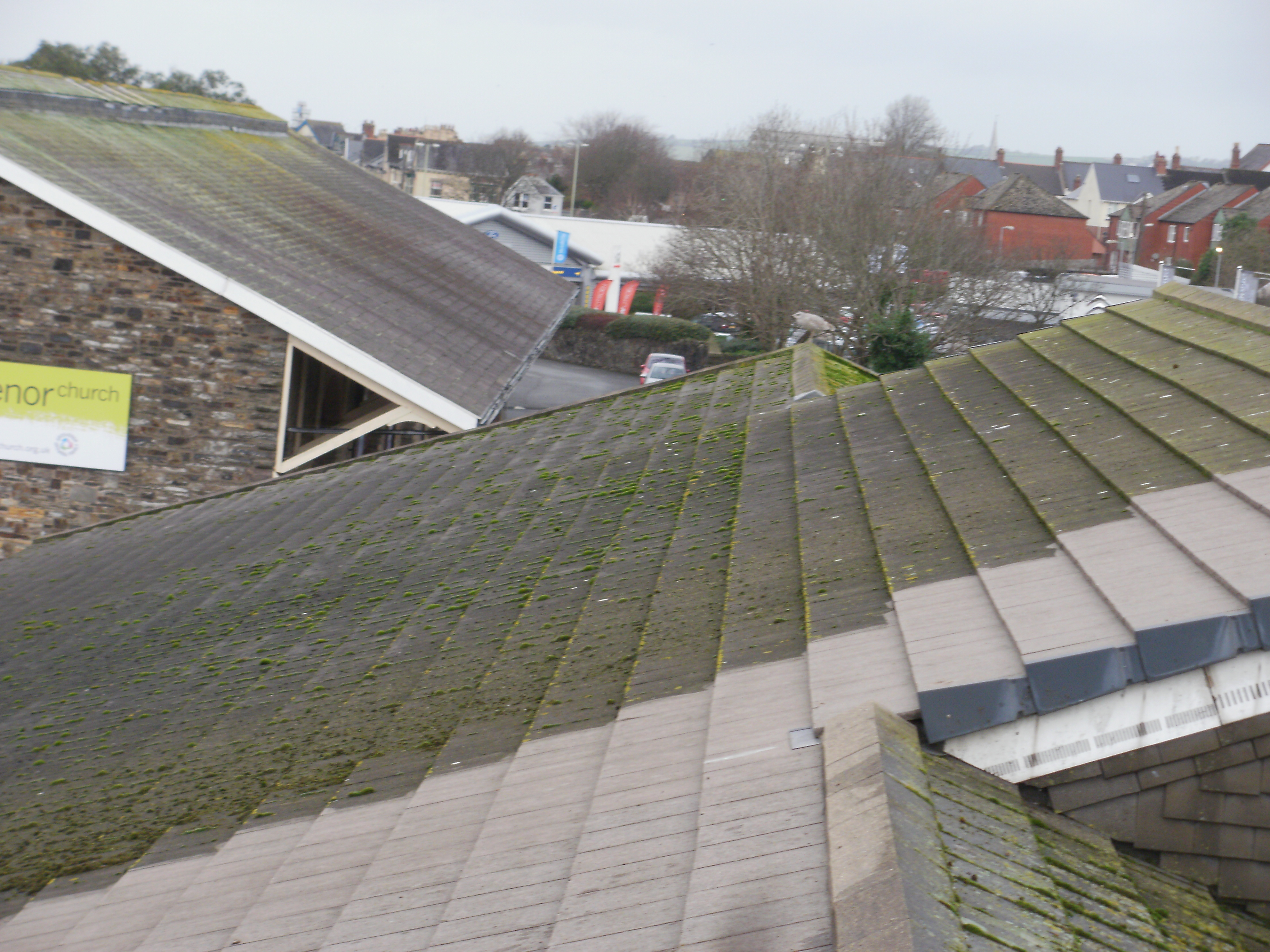 Roof Cleaning in North Devon